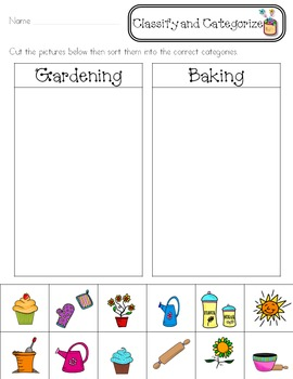 Classify & Categorize ~Reading Strategy~ Activity Pack