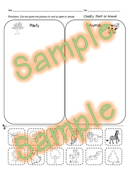 Classify Plants and Animals Worksheet