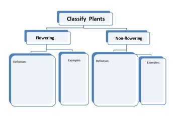 classify plants as flowering and non flowering by just