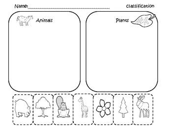 all worksheets categorizing worksheets printable worksheets guide for children and parents. Black Bedroom Furniture Sets. Home Design Ideas