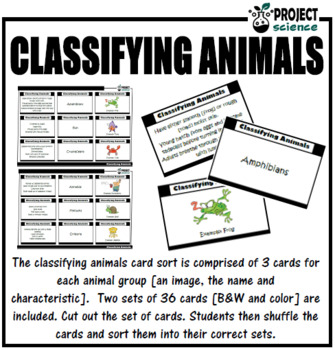 Classifying Animals Card Sort