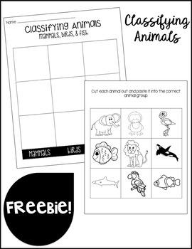 Classifying Animals FREEBIE!!
