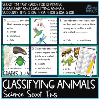 Classifying Animals Growing Super Bundle