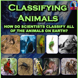 Classifying Animals - PowerPoint & Activities (Animal Classification)