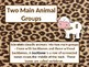 Classifying Animals PowerPoint Presentation