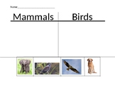 Classifying Animals Sort - Special Education Science - Worksheet for Found. Text