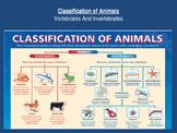 Classifying Animals: Vertebrates and Invertebrate Interactive Unit