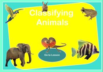 Animal Classification Presentation