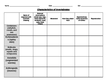 Classifying Invertebrates Chart