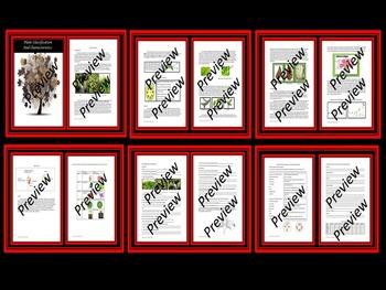 Six Kingdoms Classification and Characteristics Bundle