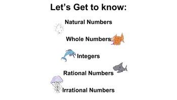 6th Grade Math: Classifying Numbers Presentation (PDF presentation)