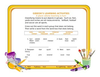 Cognitive Exercise-Classifying Objects