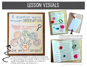 Classifying Objects Scavenger Hunt Activity and Lesson - 2nd Grade - NGSS PS1-1