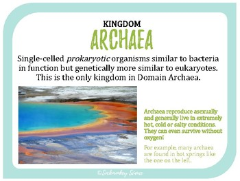 Classifying Organisms (Kingdoms) - 6th Grade Science Vocabulary