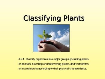 Classifying Plants: Flowering & Non-flowering