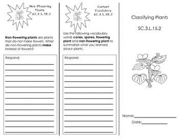 Classifying Plants Trifold