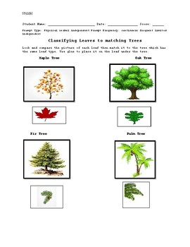 classifying plants for unique learners cos compares