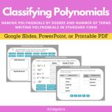 Classifying Polynomials - Polynomial Vocabulary Digital Activity