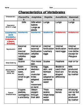 Classifying Vertebrates Chart