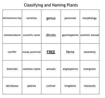 Classifying and Naming Plants Bingo for an Agriculture II Plant Science Course