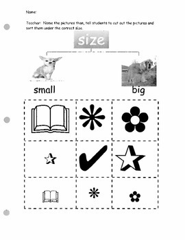 Classifying and Sorting Activities