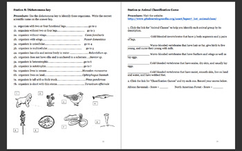 Classifying and exploring life stations review activity