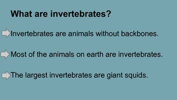 Classifying invertebrates