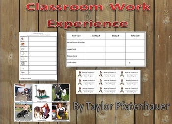 Classrom Work Experience