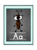 Classroom Alphabet