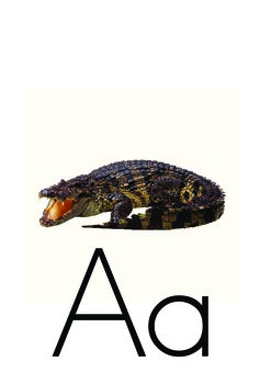Classroom Alphabet A-Z