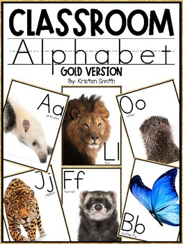 Classroom Alphabet With Real Life Pictures (Gold Version)