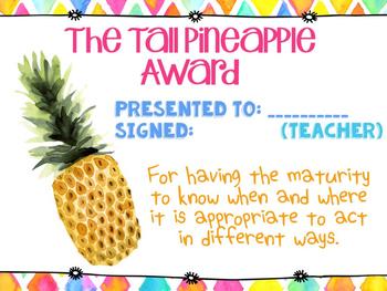 Classroom Awards Bright and Bold Themed