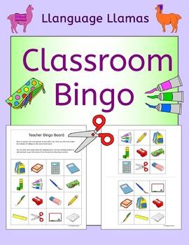 Classroom Bingo for ESL, EAL, EFL