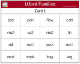 Classroom Bingo - Word Families