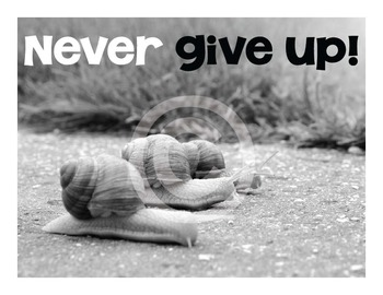 Classroom Character Poster - Never Give Up!