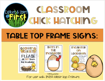 Classroom Chick Hatching Table Top Frame Signs
