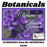 Classroom Decor BEAUTIFUL BOTANICALS - Hydrangea