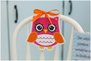 Classroom Decor Bright Owls - Full Collection Bundle