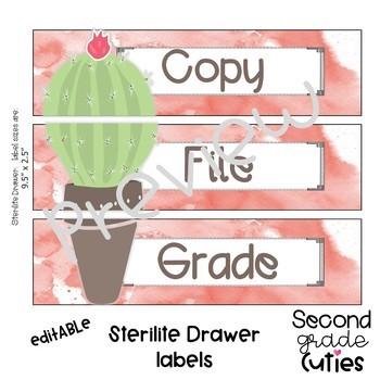 Classroom Decor Cactus Love- Editable Sterilite Drawer Labels