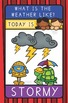 Classroom Decoration Weather Posters