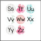 Classroom Decor - Word Wall Letters Shiplap Turquoise Floral