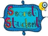Classroom Environment...Secret Mystery Student
