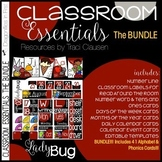 Alphabet, Phonics and Classroom Decor - BUNDLE - Ladybug