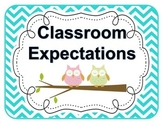 Classroom Expectations Owls and Chevron