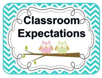 Classroom Expectations Owls and Chevron *Editable