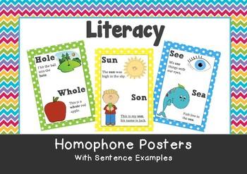 Teaching Homophones - Make Take &amp- Teach