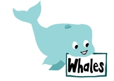 Classroom Groups - Whales