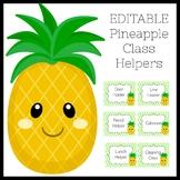Pineapple Classroom Theme | Class Helpers