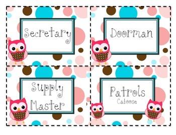 Classroom Job Cards Whimsical Owl Themed