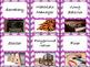 42 Classroom Jobs (C.D. Aligned) Dark Pink Background